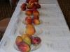 mango-line
